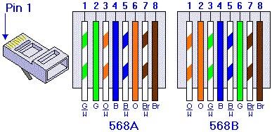 网线568A 568B